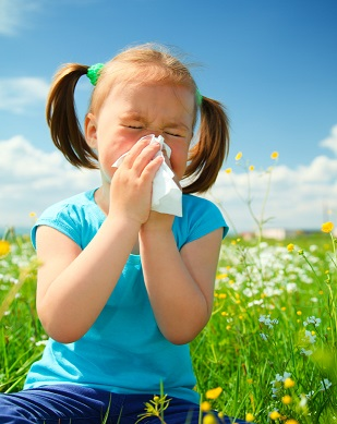 Hay Fever and Allergies in Kids